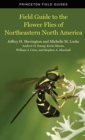 Field Guide to the Flower Flies of Northeastern North America - Book