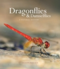 Dragonflies and Damselflies : A Natural History - eBook