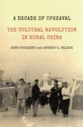 A Decade of Upheaval : The Cultural Revolution in Rural China - eBook