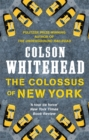 The Colossus of New York - Book