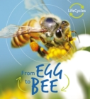 Lifecycles: Egg to Bee - Book
