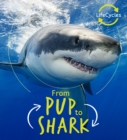 Lifecycles - Pup To Shark - Book