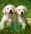 Lifecycles - Pup To Dog - Book