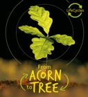 Lifecycles - Acorn to Tree - Book