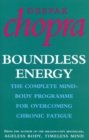 Boundless Energy : The Complete Mind-Body Programme for Beating Persistent Tiredness - Book