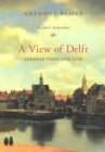 A View Of Delft - Book