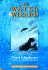 The Water Wizard - The Extraordinary Properties of Natural Water - eBook