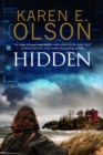 Hidden : First in a New Mystery Series - Book