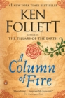 Column of Fire - eBook