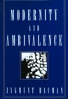 Modernity and Ambivalence - eBook