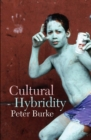 Cultural Hybridity - eBook