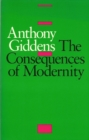 The Consequences of Modernity - eBook