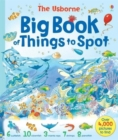 Big Book of Things to Spot - Book