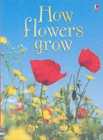 How Flowers Grow - Book