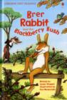Brer Rabbit and the Blackberry Bush - Book