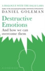 Destructive Emotions - Book