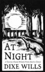 At Night : A Journey Round Britain from Dusk Till Dawn - Book