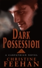 Dark Possession : Number 18 in series - Book