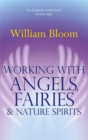 Working With Angels, Fairies And Nature Spirits - Book