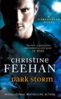 Dark Storm : Number 23 in series - Book