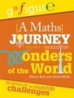 Go Figure: A Maths Journey Around the Wonders of the World - Book