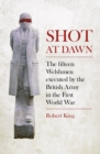Shot at Dawn : The Fifteen Welshmen Executed by the British Army in the First World War - eBook