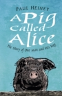 A Pig Called Alice : The Story of One Man and His Hog - Book