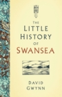The Little History of Swansea - eBook