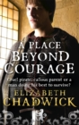 A Place Beyond Courage - Book