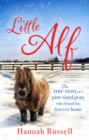 Little Alf : The true story of a pint-sized pony who found his forever home - eBook