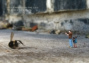 Little People in the City : The Street Art of Slinkachu - Book