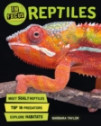 In Focus: Reptiles - Book
