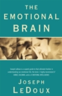 The Emotional Brain - Book