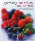 Growing Berries and Currants : A Directory of Varieties and How to Cultivate Them Successfully - Book