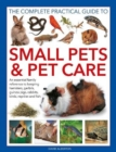Small Pets and Pet Care, The Complete Practical Guide to : An essential family reference to keeping hamsters, gerbils, guinea pigs, rabbits, birds, reptiles and fish - Book