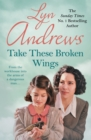 Take these Broken Wings : Can she escape her tragic past? - eBook