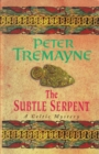 The Subtle Serpent (Sister Fidelma Mysteries Book 4) : A compelling medieval mystery filled with shocking twists and turns - eBook