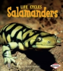 Salamanders - eBook