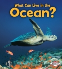 What Can Live in the Ocean? - eBook