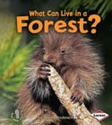 What Can Live in a Forest? - eBook