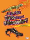 Can You Tell a Gecko from a Salamander? - eBook
