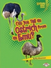 Can You Tell an Ostrich from an Emu? - eBook