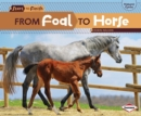 From Foal to Horse - eBook