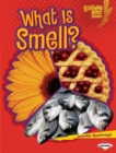 What Is Smell? - eBook