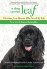 Dog Named Leaf : The Hero from Heaven Who Saved My Life (New York Times Best Seller) - eBook