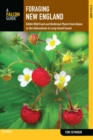 Foraging New England : Edible Wild Food and Medicinal Plants from Maine to the Adirondacks to Long Island Sound - eBook