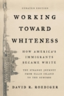 Working Toward Whiteness : How America's Immigrants Became White: The Strange Journey from Ellis Island to the Suburbs - eBook