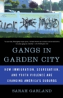 Gangs in Garden City : How Immigration, Segregation, and Youth Violence are Changing America's Suburbs - eBook