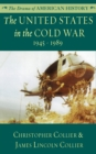 The United States in the Cold War - eBook
