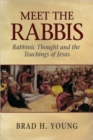 Meet the Rabbis : Rabbinic Thought and the Teachings of Jesus - Book